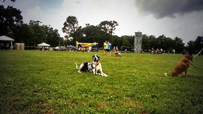 Tucker Dog Events Mempis
